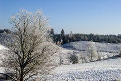 зима Скандинавии ландшафта Стоковые Изображения