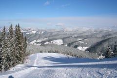 Зима снега Стоковые Изображения RF