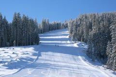 Зима снега Стоковая Фотография