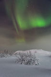 Зима, снег, рассвет, северное сияние, ноча, звезды Стоковые Изображения