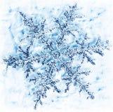 зима снежинки предпосылки Стоковое Изображение RF