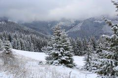 зима снежка места гор дома старая Стоковое Фото