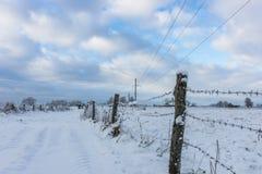 зима снежка озера пущи дня тросточки пасмурная стоковая фотография rf