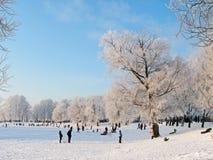 зима снежка положения праздников мальчика Стоковые Изображения