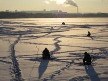 зима снежка moscow России строгая Стоковое Фото