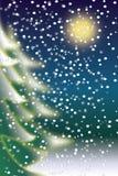 зима снежностей ночи Стоковые Фото