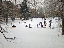 зима снежностей moscow России строгая Стоковое Изображение