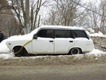 зима снежностей moscow России строгая Стоковые Изображения