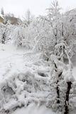 Зима Снежок в городе Сильный снегопад во время зимы в городе Эмоциональная девушка Стоковое фото RF