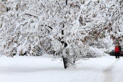 Зима Снежок в городе Сильный снегопад во время зимы в городе Эмоциональная девушка Стоковые Фото