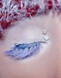 зима состава глаза рождества красная серебряная Стоковая Фотография RF