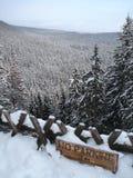 зима стоянкы автомобилей Стоковые Изображения RF