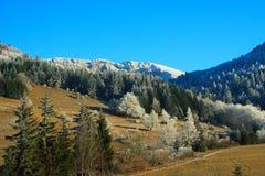 зима страны Стоковое Изображение RF