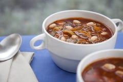 зима супа стоковая фотография rf
