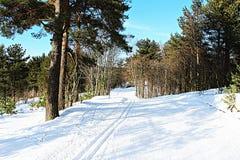 Зима След лыжи в Toksovo Стоковые Изображения
