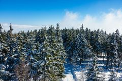 Зима с снегом в гигантских горах, чехией Стоковое Изображение