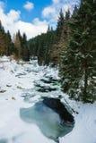 Зима с снегом в гигантских горах, чехией Стоковое Фото