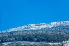 Зима с снегом в гигантских горах, чехией Стоковые Изображения
