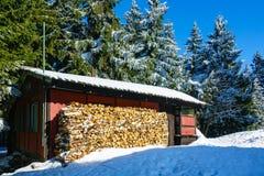 Зима с снегом в гигантских горах, чехией Стоковые Изображения RF