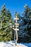 Зима с снегом в гигантских горах, чехией Стоковые Фото