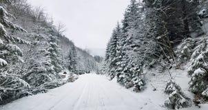 зима температуры России ландшафта 33c января ural Карпаты, Украина Стоковое Фото