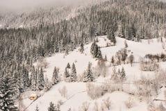 зима температуры России ландшафта 33c января ural Красивая сцена зимы в румыне Карпатах Стоковые Изображения