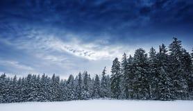 зима температуры России ландшафта 33c января ural Стоковое фото RF
