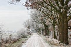 зима температуры России ландшафта 33c января ural Стоковые Изображения