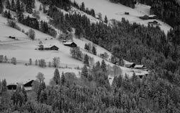 зима температуры России ландшафта 33c января ural Стоковое Изображение
