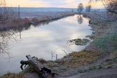 зима температуры России ландшафта 33c января ural Зеленая трава вдоль реки, покрытого с изморозью, заморозки зимы Стоковые Изображения RF
