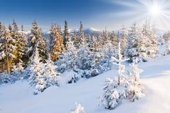 зима температуры России ландшафта 33c января ural стоковое фото
