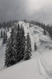 зима тропки Стоковое Изображение