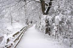 зима тропки Стоковая Фотография