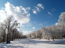 зима тропки Стоковые Фотографии RF