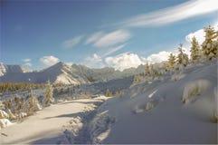 зима Украины горы ландшафта dragobrat Стоковые Изображения