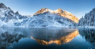 зима Украины горы ландшафта dragobrat стоковое изображение