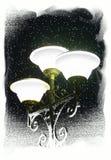 зима улицы светильника иллюстрация штока