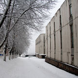 зима улицы снежка серий Стоковые Фото