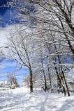 зима улицы Стоковое Изображение