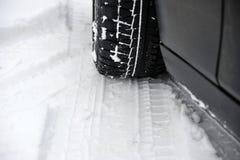 Зима утомляет на колесе автомобиля Стоковое Фото