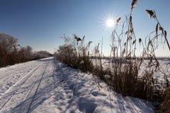 Зима утра на луге с голубым небом и красивым солнцем Стоковые Изображения