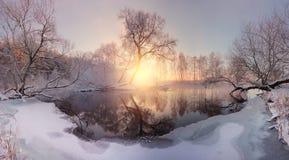 зима утра солнечная Первый лед на озере Стоковая Фотография