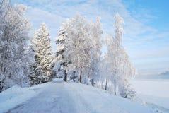 зима Финляндии Стоковая Фотография RF