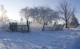 зима фото Стоковое Изображение RF