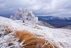 зима холма Стоковое Фото