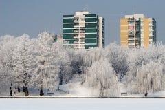 зима цвета Стоковое Изображение RF