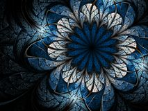 зима цветка Стоковое Изображение RF