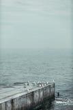 Зима Чёрного моря Стоковые Фото