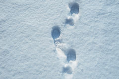 зима шагов снежка места утра Стоковые Фото
