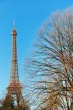 зима Эйфелевы башни Стоковые Фотографии RF